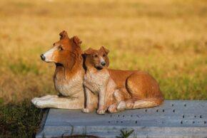 nagrobki dla zwierząt cena